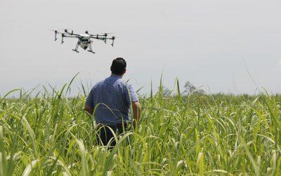 Drones y Agricultura, mejora de los tratamientos fitosanitarios